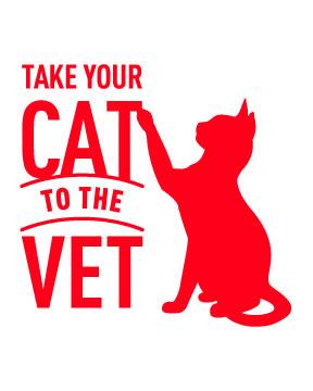 10 conseils utiles pour transporter son chat vers le cabinet vétérinaire